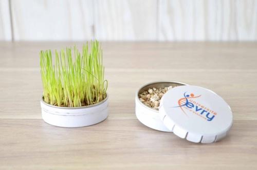 La boîte clic-clac est peut servir de cadeau écologique et pratique pour un nouveau client.