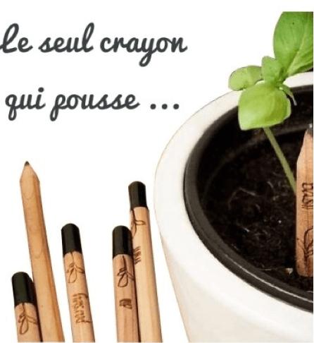 Ce crayon contient une capsule de graines qu'une fois planter dans la terre permet de faire germer une fleur.