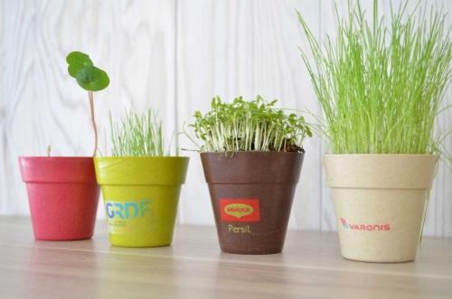 Idée Nature communique à travers les graines, les arbres, les plantes et les saveurs.