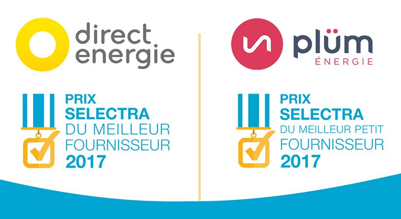 Ces fournisseurs d'électricité que les Français ne connaissent pas